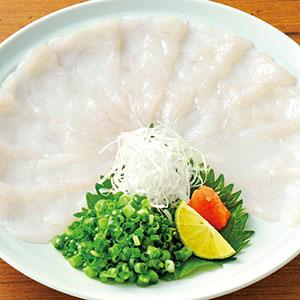 河豚生鱼薄切片